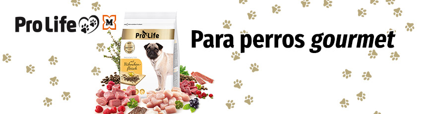 Pro Life Hund - Para perros gourmet