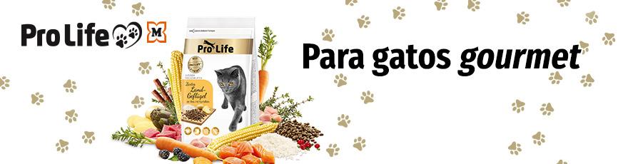 Pro Life Katze - Para gatos gourmet