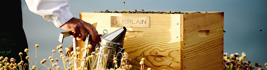 guerlain-bee-day