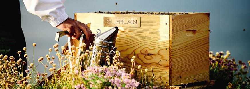 guerlain-world-bee-day