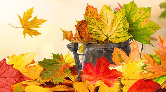 Basteln im Herbst