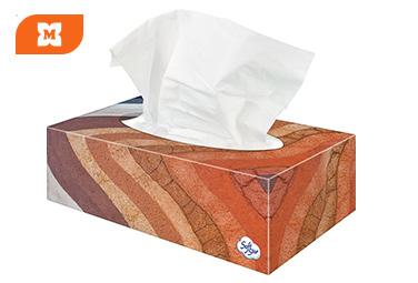 Softstar - Papírzsebkendő dobozban