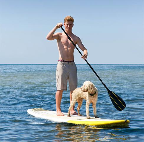 Stand-Up-Paddling mit Hund