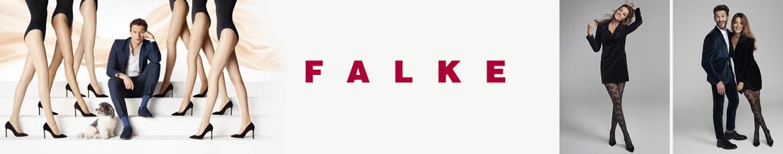 Falke bei Müller
