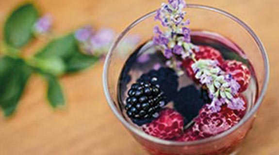 Shrub de lavanda-frutos rojos