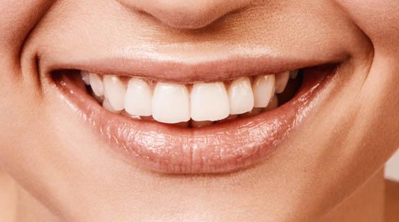 Zahnpflege: Gesund im Mund