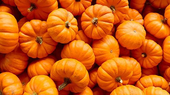 Kreative Herbst-Rezepte