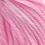 Rosé/Nelke
