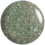 Shimmering Spruce